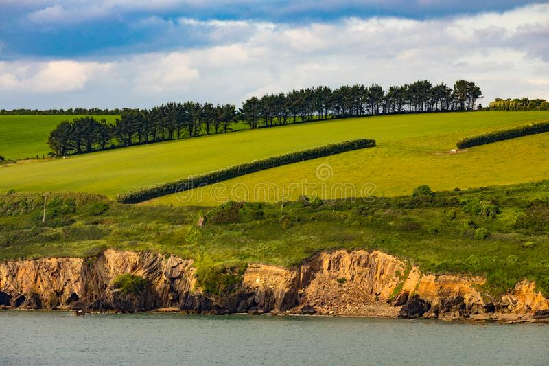 Süd-Irlands grünere Weiden stockfotos