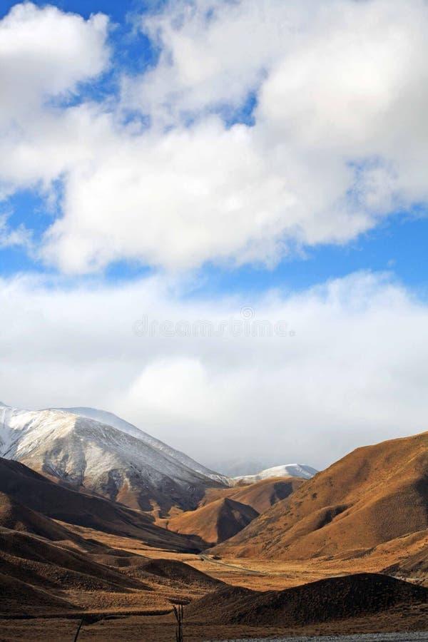 Südinsel, Neuseeland lizenzfreie stockbilder