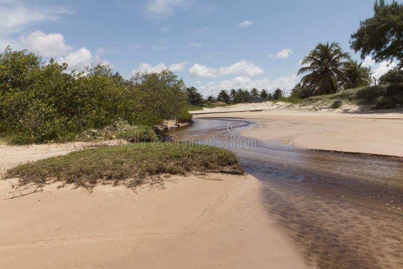 Südküstenlinie - Geburts-, RN, Brasilien lizenzfreies stockfoto