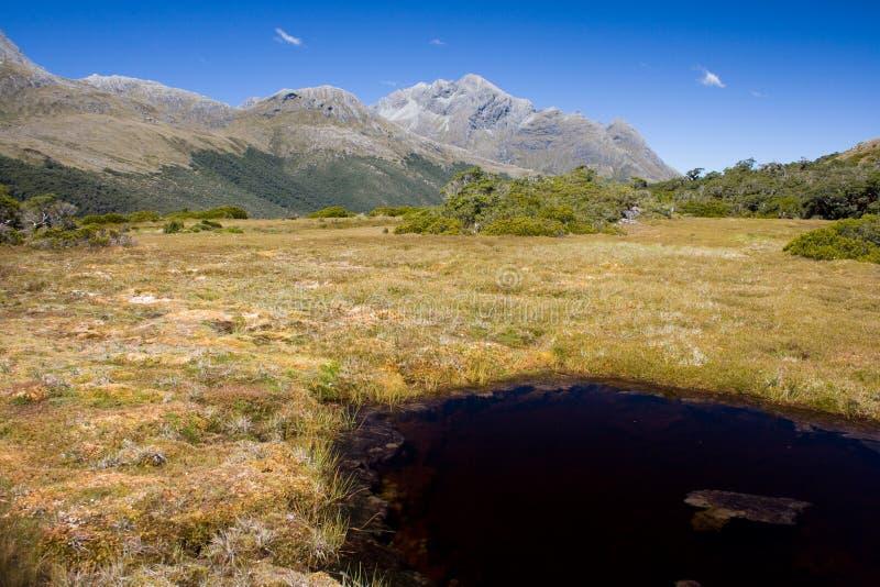 Südliche Alpen lizenzfreie stockfotografie
