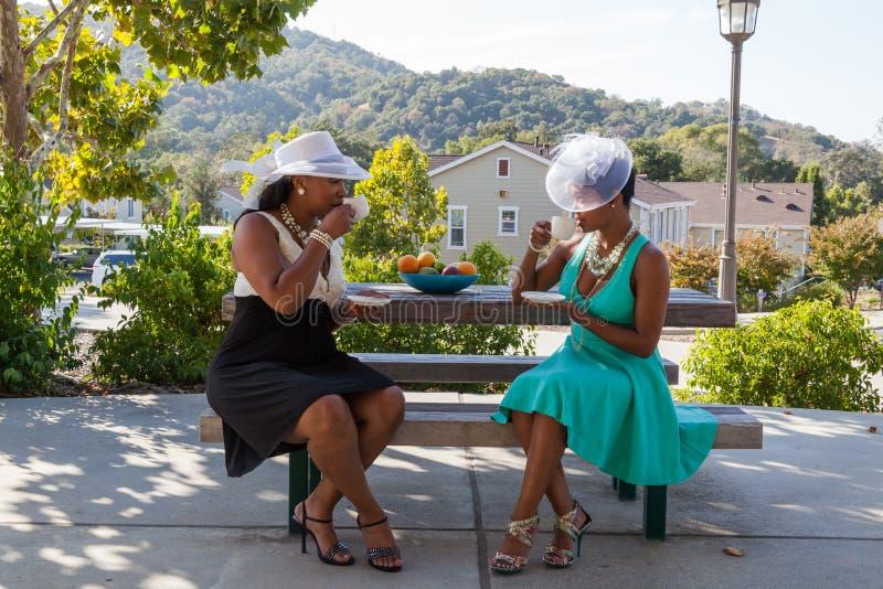 Südliche Damen, die Tee am Park trinken lizenzfreies stockbild