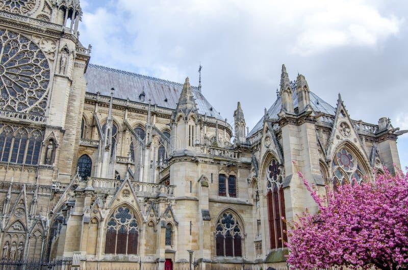 Südliche Fassade Notre Dame de Paris stockfotografie