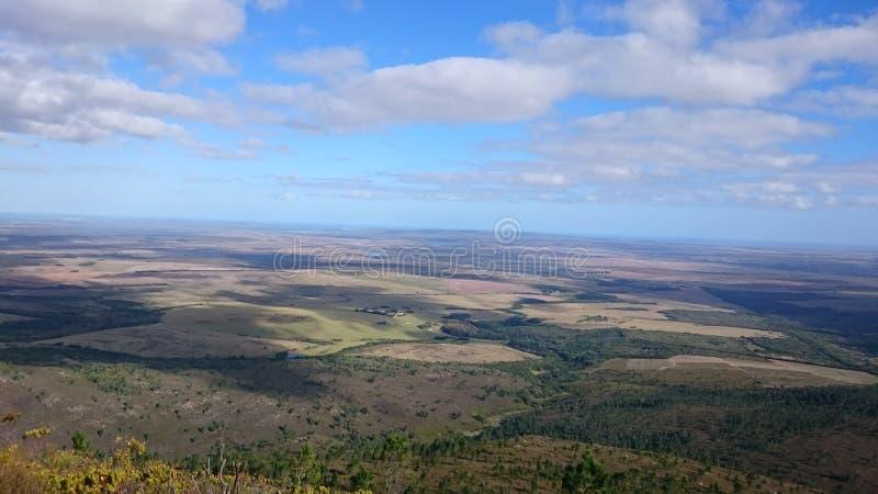 Südlicher afrikanischer Tipp stockfotografie