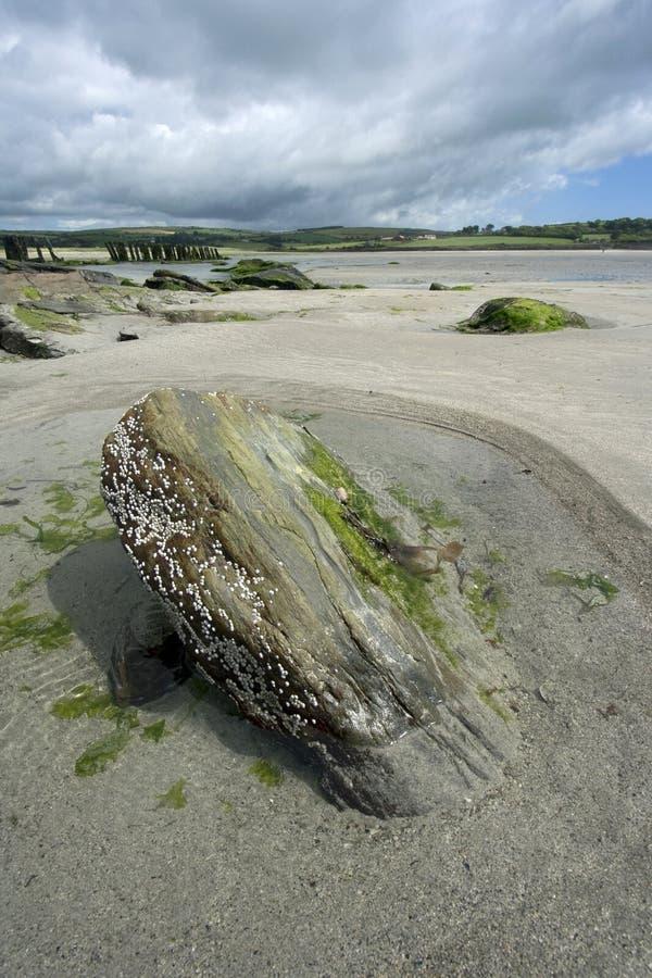 Südlicher Irland-Strand stockfotos