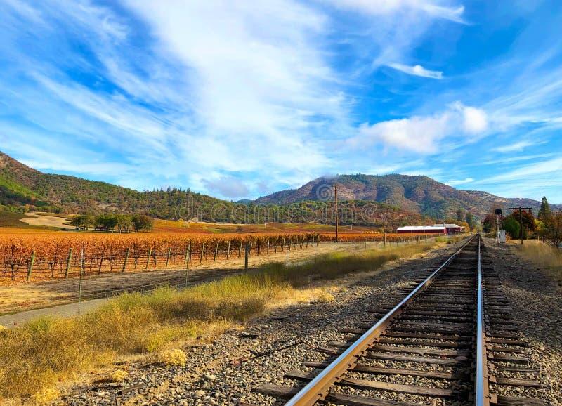 Südlicher Oregon-Weinberg im Herbst lizenzfreie stockfotografie
