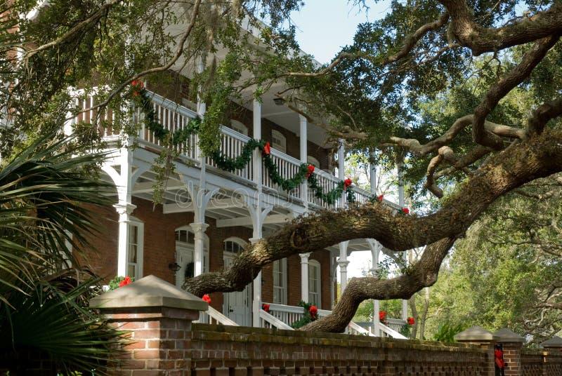 Südliches Weihnachten stockbilder