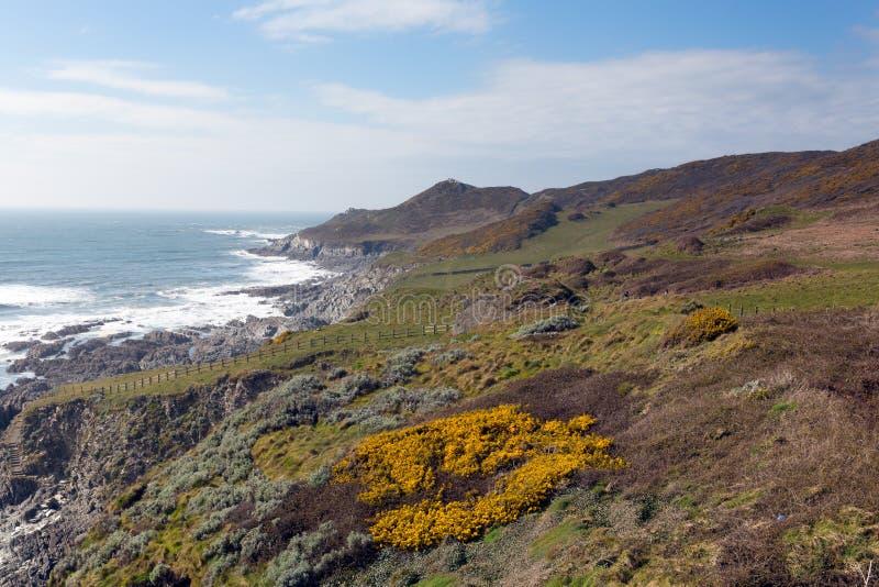 Südwestküstenweg Woolacombe Devon stockbilder