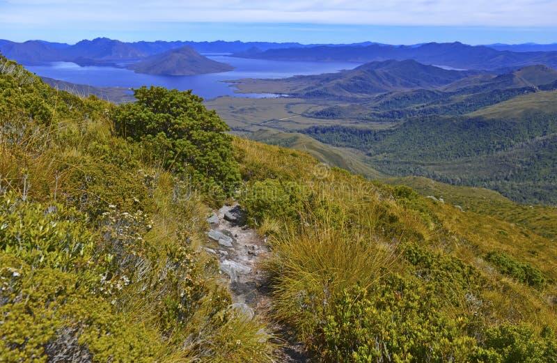 Südwestnationalpark Tasmanien, Australien stockfotografie