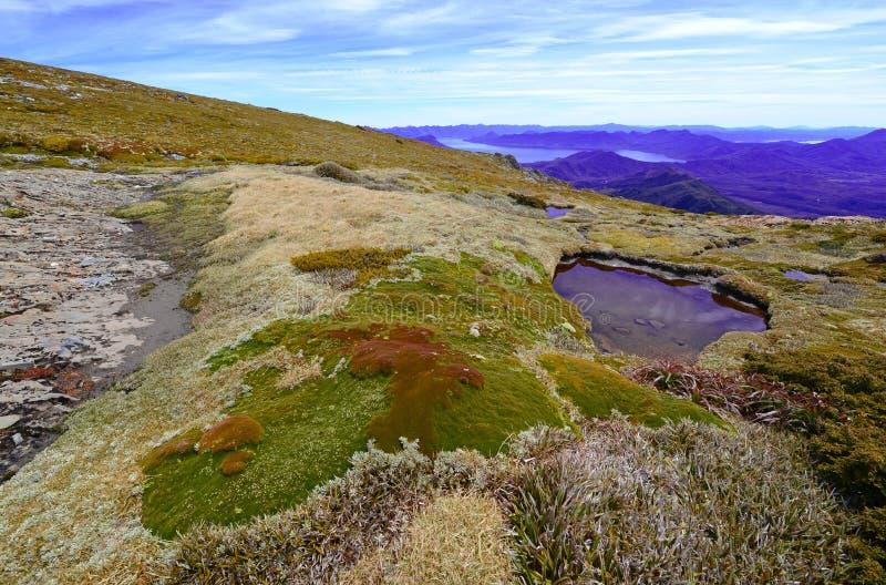 Südwestnationalpark Tasmanien, Australien stockfotos