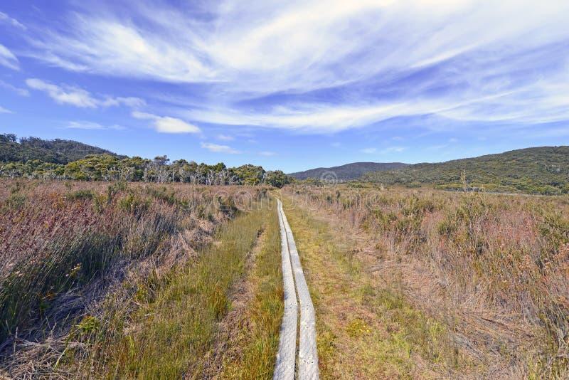 Südwestnationalpark Tasmanien, Australien lizenzfreies stockfoto