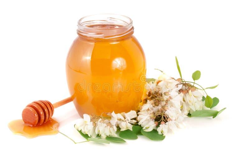 Słój miód z kwiatami akacja na białym tle zdjęcia stock