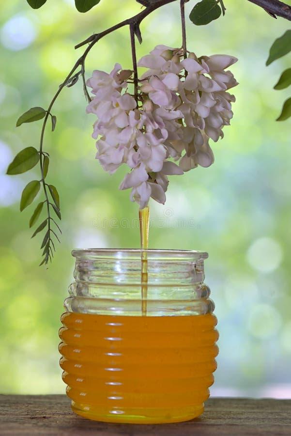 Słój miód z kwiatami akacja na stole zdjęcie royalty free