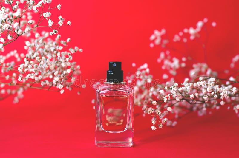 Słój pachnidło na czerwonym tle z łyszczec fotografia stock