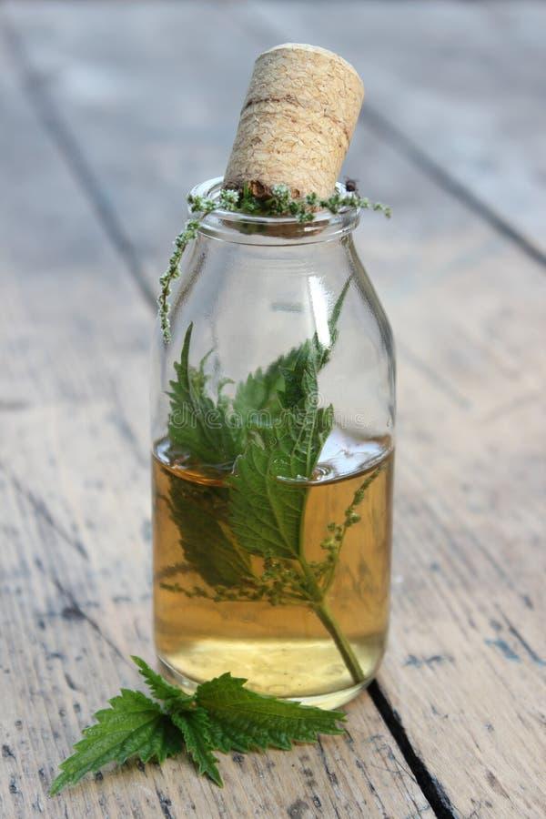 Słój z alkoholu tincture i pokrzywa liśćmi zdjęcia stock