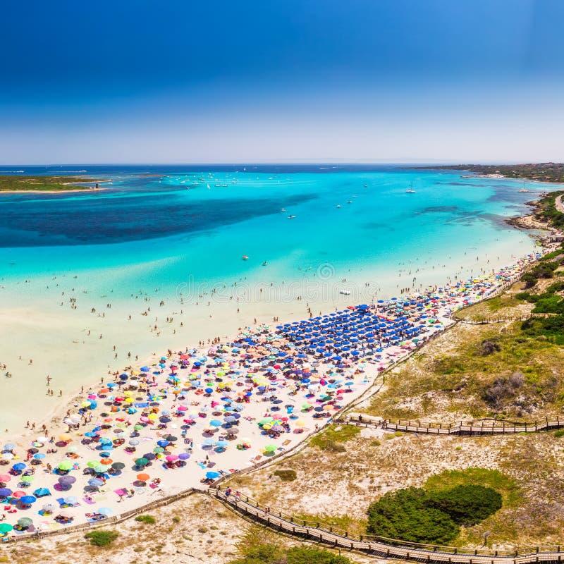 Sławna losu angeles Pelosa plaża na Sardinia wyspie, Sardinia, Włochy obrazy stock