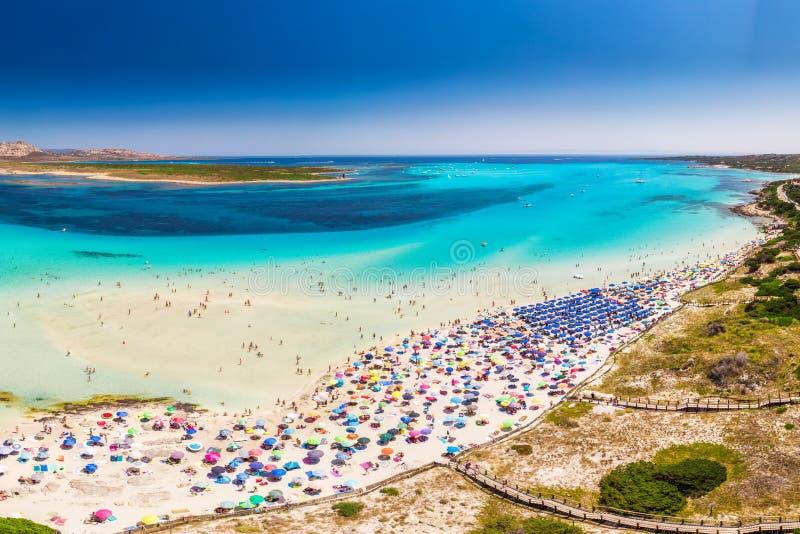 Sławna losu angeles Pelosa plaża na Sardinia wyspie, Sardinia, Włochy obraz stock