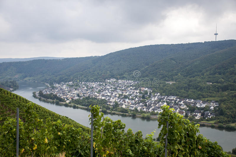 Sławna Niemiecka wino regionu Moselle rzeka Winningen zdjęcie royalty free