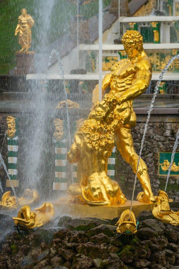 S?awna Samson i lwa fontanna w Peterhof Uroczystej kaskadzie zdjęcie stock