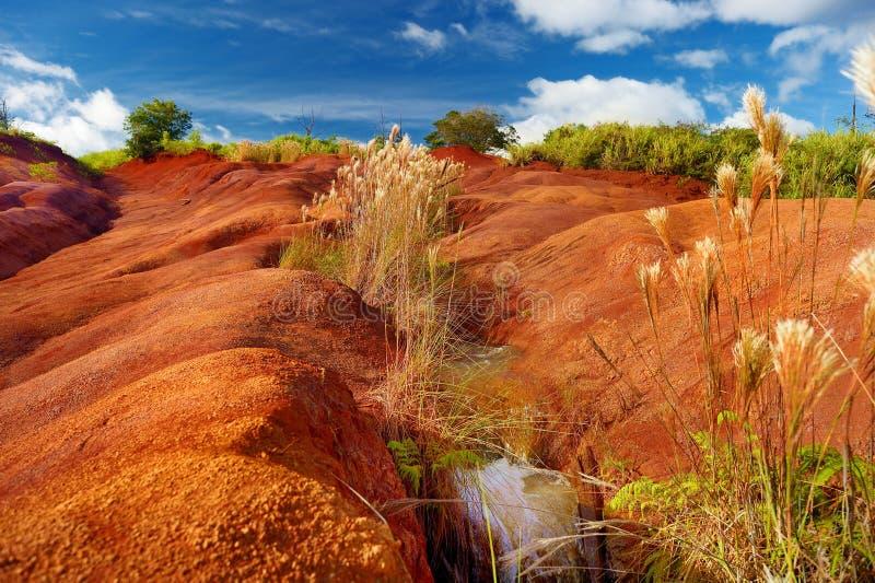 Sławny czerwony brud Waimea jar w Kauai obrazy stock