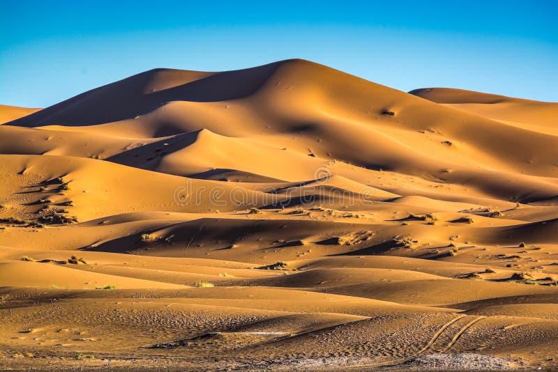 Sławny diuna erg Chebbi w Maroko, blisko Merzouga fotografia royalty free