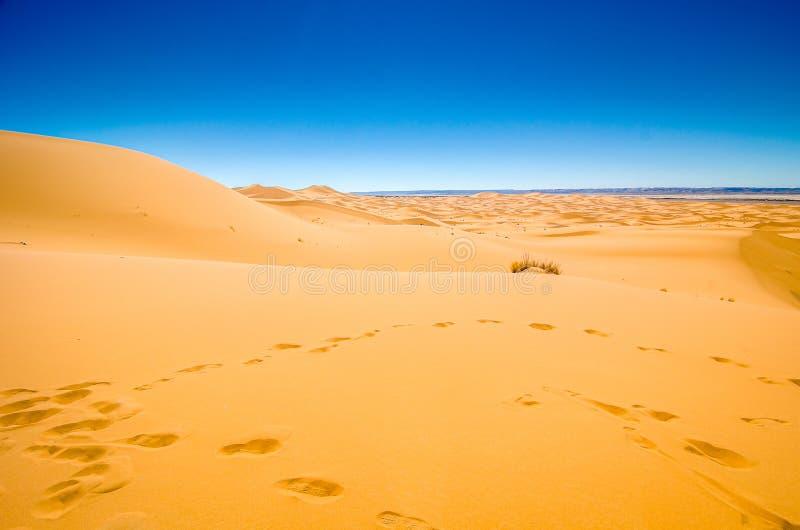 Sławny diuna erg Chebbi w Maroko, blisko Merzouga zdjęcie stock