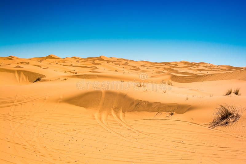 Sławny diuna erg Chebbi w Maroko, blisko Merzouga obraz royalty free