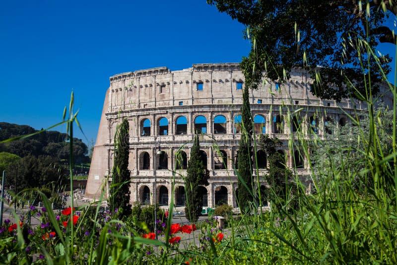 Sławny kolosseum lub fotografia royalty free