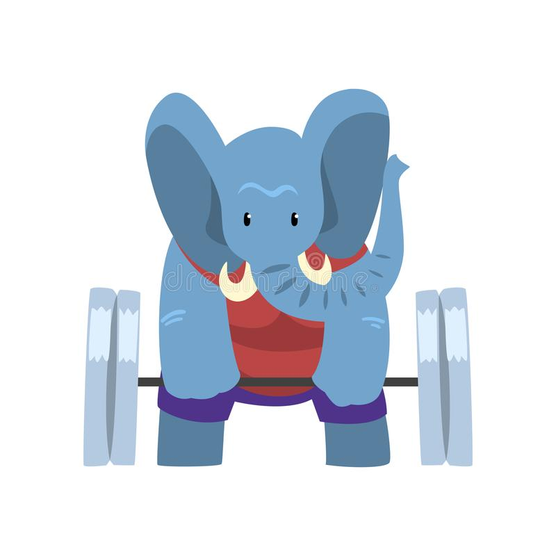 Słoń ćwiczy z barbell, śmieszny sportive dzikie zwierzę charakter robi sport wektorowej ilustraci na bielu ilustracja wektor