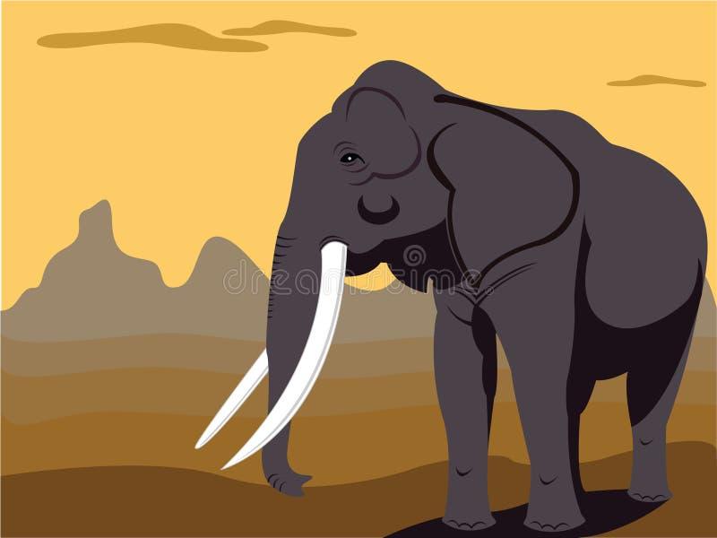 słoń byka royalty ilustracja