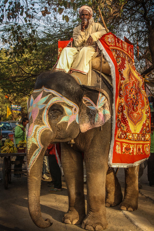 Słoń i Mahaout na ulicie India fotografia royalty free