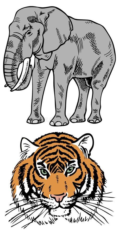 Słoń i tygrys ilustracji