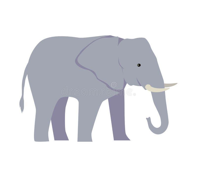 Słoń kreskówki Wielki ssak Odizolowywający na bielu ilustracja wektor