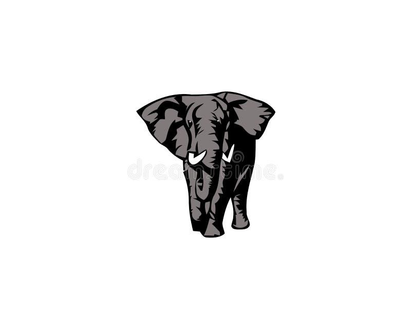 Słoń kreskówki Wielki ssak Odizolowywający na bielu Afrykański krzaka, lasu słoń lub ilustracja wektor