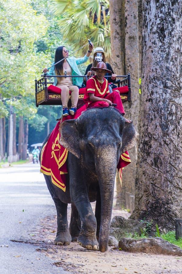 Słoń przejażdżka przy Angkor Wat w Kambodża obrazy stock