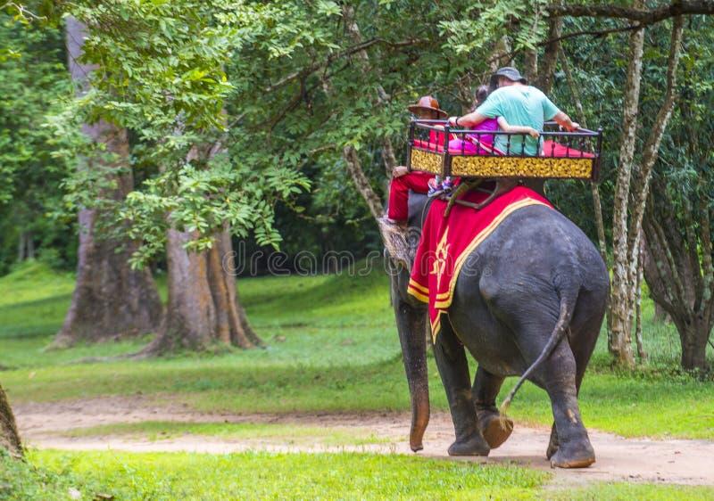 Słoń przejażdżka przy Angkor Wat w Kambodża obraz stock