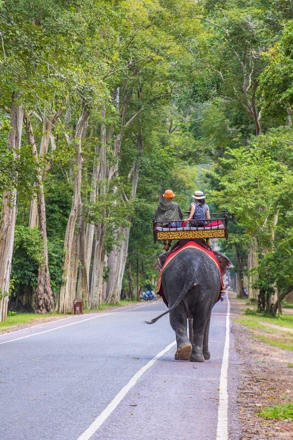 Słoń przejażdżka przy Angkor Wat w Kambodża zdjęcia royalty free