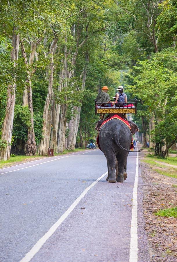 Słoń przejażdżka przy Angkor Wat w Kambodża obrazy royalty free