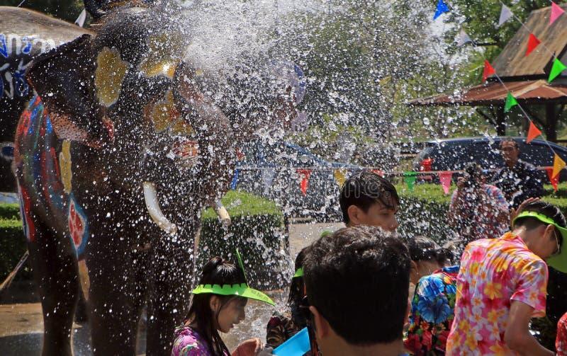 Słoń sztuki wody bitwa podczas Songkran zdjęcia royalty free