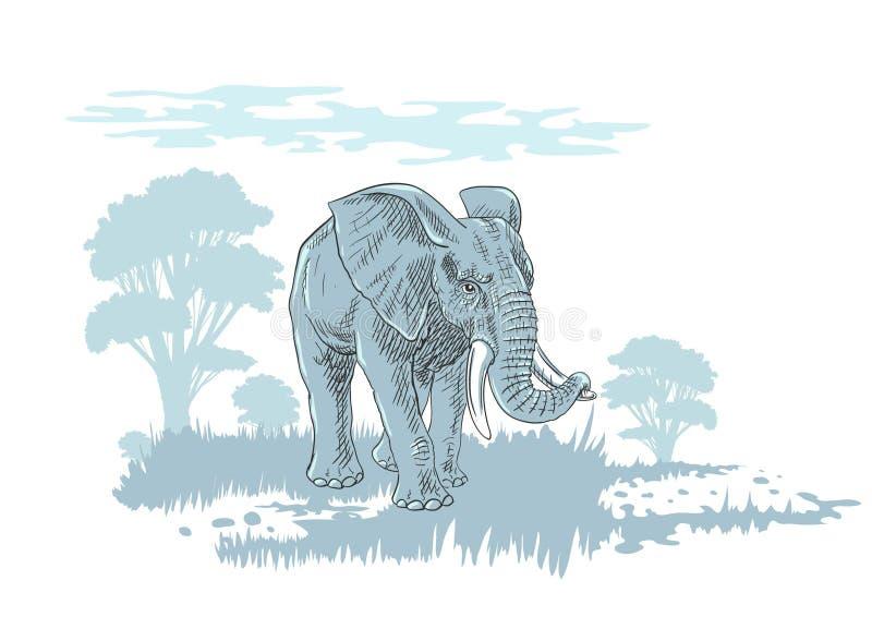 Słoń w sawannie ilustracji