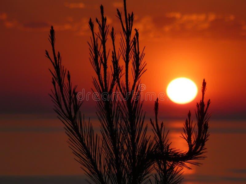 2 słońca obraz stock