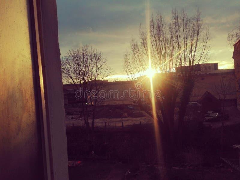Słońca go& x27; s puszka okno zdjęcia royalty free