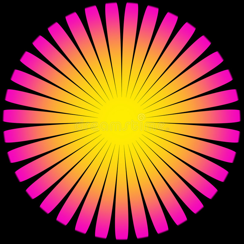 Słońca Kwiatu Magenta Kolor żółty ilustracja wektor