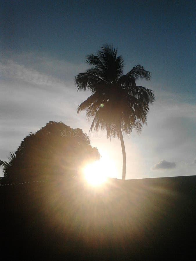 Słońca odbicie fotografia stock