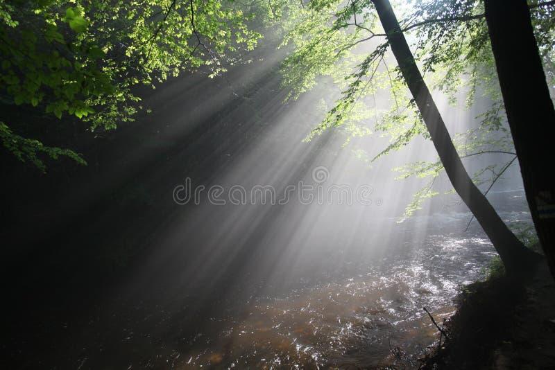 Słońca ` s promienie iluminują ciemnego wąwóz zdjęcia stock