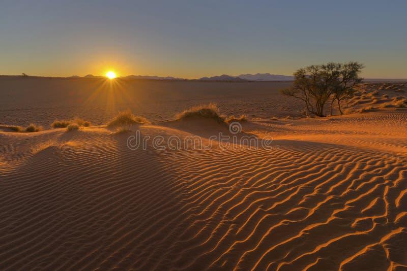 Słońca starburst przy zmierzchem i wiatrem zamiatał piasek na diunie zdjęcia royalty free