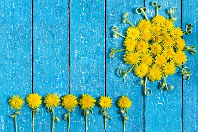 Download Słońce dandelion i kwiaty obraz stock. Obraz złożonej z roślina - 53781963