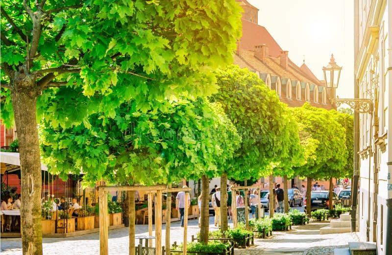 Słońce iluminuje zielonych drzewa z światłem architektura miasto ulicy Wrocławski, Polska obrazy royalty free