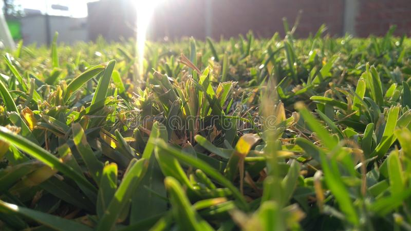 Słońce iluminuje ziemię zdjęcie royalty free