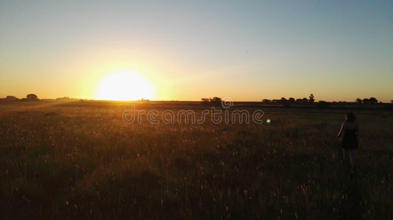 Słońce, pole zdjęcie stock