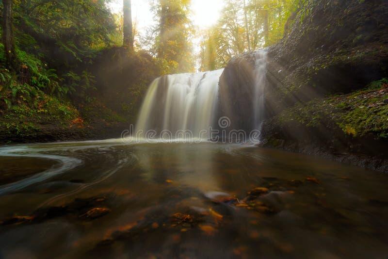 Słońce promienie nad Chowanymi spadkami w Clackamas LUB obraz royalty free